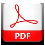 pdf icon 02 big
