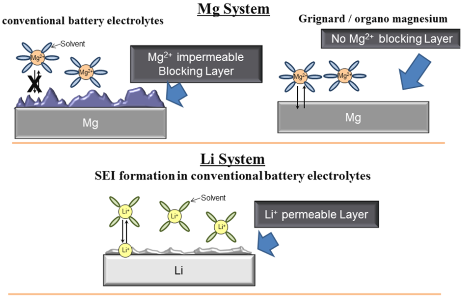 magnesium versus lithium